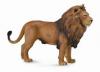 Africký lev