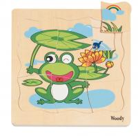 Puzzle – stages of a frog